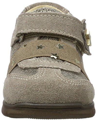 Fille Primigi taupe Basses Gris Bébé Sneakers talpa 8036 Pck 7qXwCqxRO