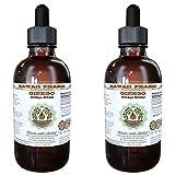 Ginkgo Alcohol-FREE Liquid Extract, Organic Ginkgo (Ginkgo Biloba) Dried Leaf Glycerite 2x4 oz