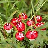 Miniature Garden Decor - 10 Pieces Mini Red Mushroom Garden Ornament Miniature Plant Pots Fairy DIY Dollhouse - Miniature Fairy Garden Décor