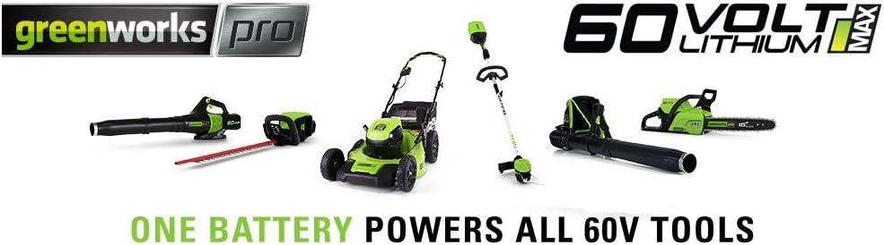 Amazon.com: Greenworks Pro 60-volt max-volt 5-amp horas ...