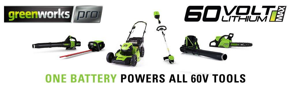 Amazon.com: Greenworks Pro 60-volt Max 2.5-amp horas batería ...