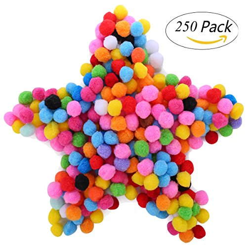 250 Pieces 1 Inch Pom Poms for Craft Making,Hobby Supplies and DIY Creative Crafts Decorations, Assorted Colors