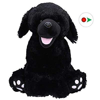 Stuffems Toy Shop Record Your Own Plush 16 inch Black Lab - Ready to Love in A Few Easy Steps: Toys & Games