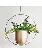 WUHUAROU Hangende bloempotten, hangende bloempotten, metaal, hangende plantenpotten, muur voor planten, vetplanten, tuin, buiten, binnen