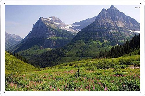 Tin Sign Poster #15752 Glacier National Park cm By Nature Scene Painting