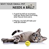 Toy Ball for Dogs [Dental Treat][Bite Resistant] Jakpak Durable Non-Toxic Strong Tooth Cleaning Dog Toy Balls for Pet Training/Playing/Chewing,Soft Rubber,Bouncy,Mini Dog Ball 2 Inch Size