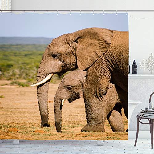 Ahawoso Shower Curtain Set with Hooks 72x72 Park Elephants Addo South Big Enormous Wild Safari Africa Strong Herd Design Tusk Holidays Huge Bathroom Curtains Waterproof Polyester Fabric Bath Decor