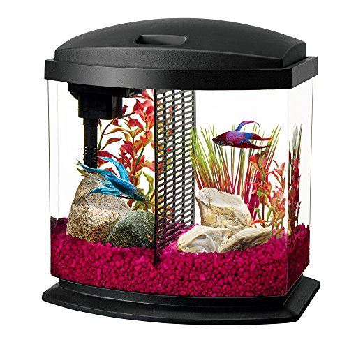Aqueon LED BettaBow Aquarium Starter Kits with LED Lighting, 2.5 Gallon Betta, ()
