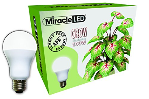 Miracle LED Almost Free Energy 100W Spectrum Grow Lite – Daylight White Full Spectrum LED Indoor Plant Growing Light Bulb for DIY Horticulture, Hydroponics, and Indoor Gardens (604293) Single Pack Review