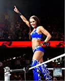 WWE Brie Bella Action Photo