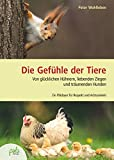 Die Gefühle der Tiere: Von glücklichen Hühnern, liebenden Ziegen und träumenden Hunden. Ein Plädoyer für Respekt und Achtsamkeit