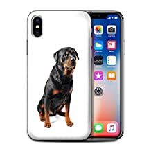 STUFF4 Phone Case / Cover for Apple iPhone X/10 / Swiss Mountain Design / Dog Breeds Collection