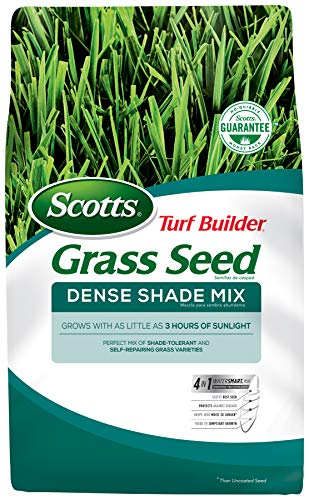 Scotts Turf Builder Grass Seed - Dense Shade Mix, 7-Pound (Not Sold in Louisiana) (Best Turf For Shade)