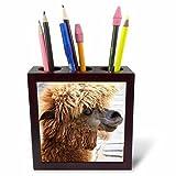 3dRose Alpaca. Lama. South America. Brown. Tile Pen Holder, 5''