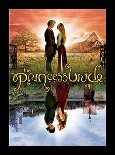 Wallspace The Princess Bride - 11x17 Framed Movie Poster