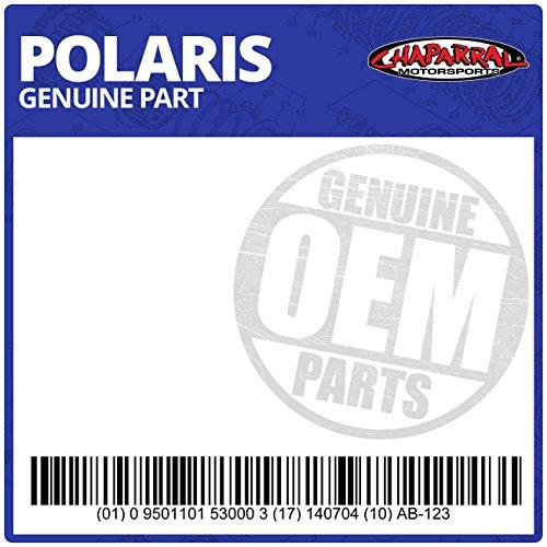 Genuine Polaris Part Number 2200463 - KIT, PISTON&SEAL-** for Polaris ATV / Motorcycle / Snowmobile/ or Watercraft -