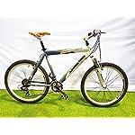 CINZIA Bici Bicicletta 26' Modello Boomer MTB Mountain Bike