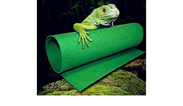 Reptiles Alfombra Terrario Liner, Fuji Bearded Dragon Accesorios ...