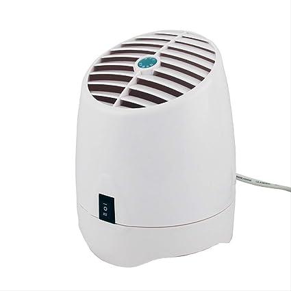 Amazon.es: YCSD Purificador de Aire Auto Generador De Ozono 220v ...