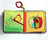 Tiny Love Where Do I Live Book Toy