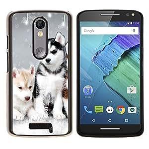 Husky Invierno Perro Cachorro Canino- Metal de aluminio y de plástico duro Caja del teléfono - Negro - Motorola Droid Turbo 2 / Moto X Force