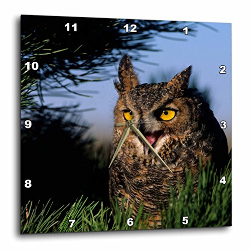 Hooting Owl Clock - 1