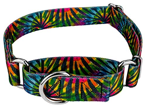 Stripe Martingale Dog Collar - Country Brook Petz - Tie Dye Stripes Martingale Dog Collar - Groovy Collection with 5 Far Out Designs (1 Inch, Medium)