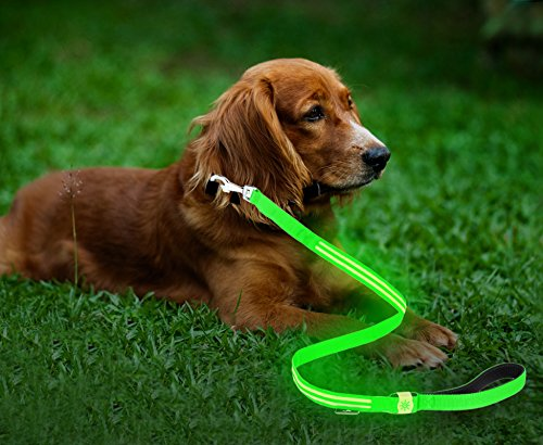 Moco Best Light Up Rechargeable 2 Strip LED Nylon Dog Leash - 47.2 inches, with 3 Light Settings and Metal Buckle - Includes USB Charger - Keep Pet Safe and Visible at All Times (Green)
