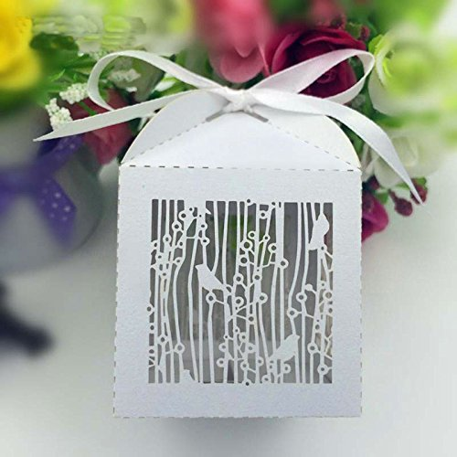 Joinwin 50PCS Laser Cut White Birdcage Wedding Favor Box in Pearlescent Paper box,party show baby shower candy favor box,chocolate box