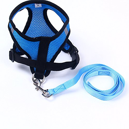 Price comparison product image DEESEE(TM) Ling Chong Pet Dog Leads Chest Straps Small Pet Adjustable (S,  Blue)