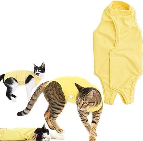 Traje De Recuperación para Gatos Pijamas para Perros Pequeños Gatos Ropa Ropa de Gato Solo para Gatos Abrigos de Gato para Mascotas Yellow,S: Amazon.es: Hogar