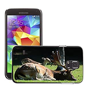 Cas Coq Case Cover // M00146410 Rut Hart Naturaleza Antlers Árbol // Samsung Galaxy S5 S V SV i9600 (Not Fits S5 ACTIVE)