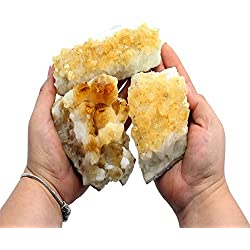 1 (One) Citrine Cluster - Citrine Cluster 1-2 lb Power Stone- Rock Paradise Exclusive COA (AMC1A)