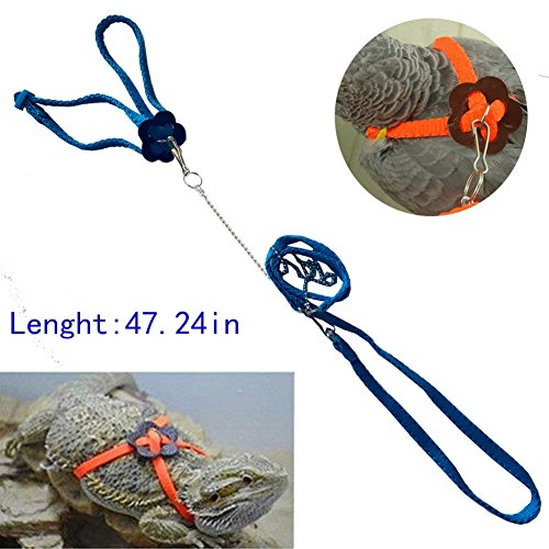 Mokook Adjustable Harness Leash for Parrot African Grey Cockatoo Macaw Ringneck Parakeet Cockatiel and Reptile Lizard Outdoor Walk, Adjustable and Bite Resistant Design, 3.9FT/1.2M (Blue) - African Lizard