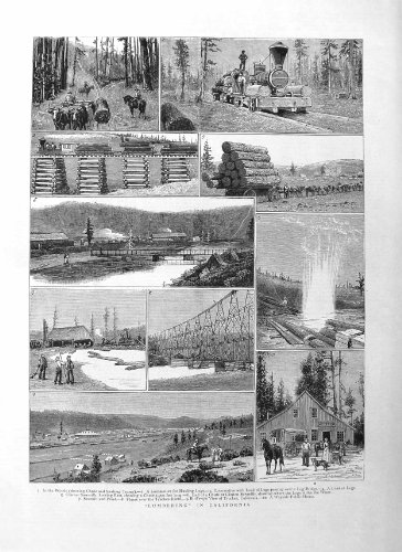 old-print Print 1885 Trees Lumbering California Logs Truckee ()