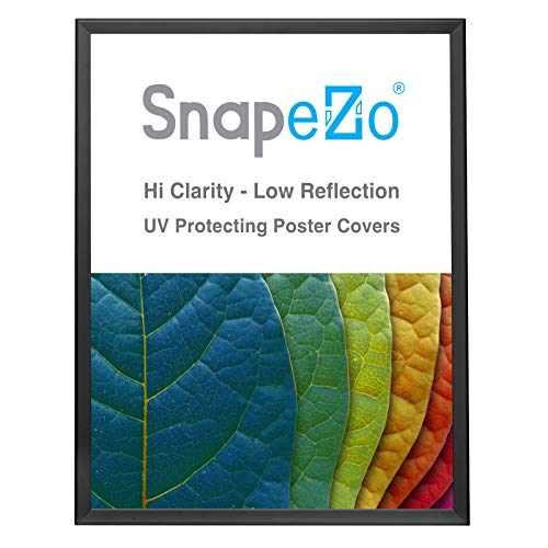 SnapeZo Poster Frame 24x30 Inches, Black 1.25 Inch Aluminum Profile, Front-Loading Snap Frame, Wall Mounting, Professional Series