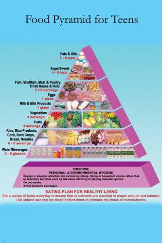 Amazon com: Food Pyramid Teens poster EDUCATIONAL diet