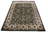 Persian Rugs for Living Room 8×10 Green Area Rug Greens Tabriz Oriental Rugs 8×10 Carpet for Bedroom Rugs (Empire 205 Green)