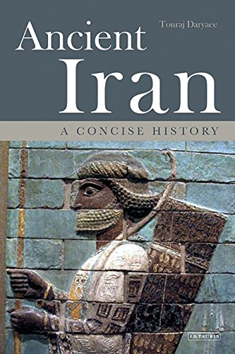 Ancient Iran: A Concise History