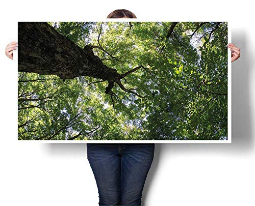 Mangooly Deer Wall Art Summer Tree Canopy Green Leaves Branches Trunk Natural Ecology Growth Foliage Picture for Bedroom Office Homes Decorations 20
