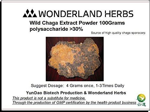 WonderLand Herbs ORGANIC CHAGA MUSHROOM INONOTUS OBLIQUUS 30:1 , Polysaccharide Above 30% EXTRACT POWDER FOR TEA - 100 Grams (3.5 OZ.)