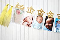 1st Birthday Glitter Decorations - Monthly Milestone Photo banner for Newborn to 12 months. Great for 1 Year old Celebration, 1-12 month Photograph Garland, Baby Shower Gift