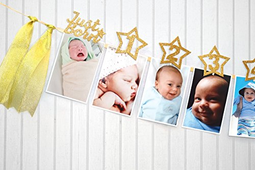 17772b48342 1st Birthday Glitter Decorations – Monthly Milestone Photo banner for  Newborn to 12 months.