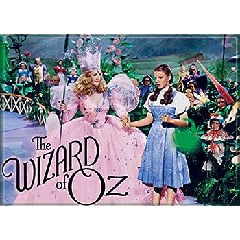 Ata-Boy Wizard of Oz Dorothy, Glinda and Munchkins 2.5