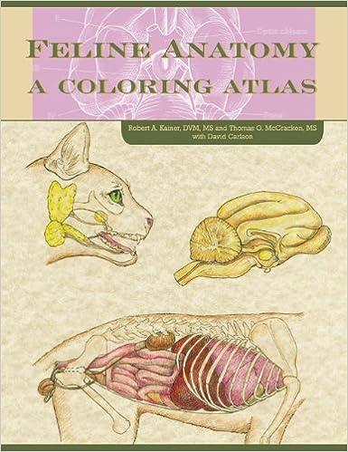 Feline Anatomy: A Coloring Atlas: Thomas O McCraken, David Carlson ...