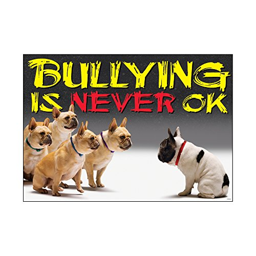 (Argus Bullying is Never OK Poster, 13.375