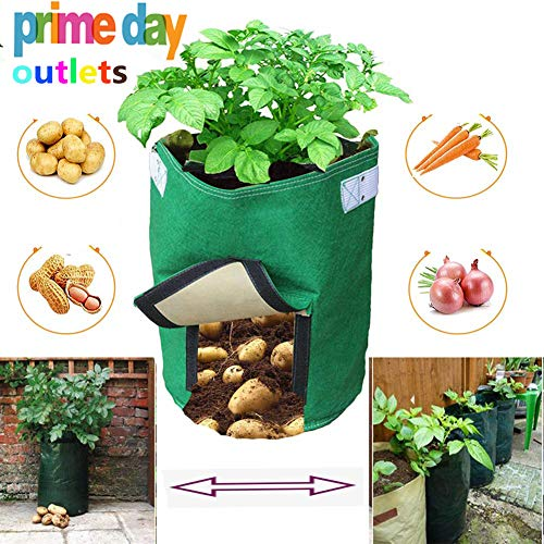 Eco Friendly Garden - Aquarius CiCI Garden Potato Grow Bag Eco-Friendly Garden Planting Grow Bags Vegetables Planter Bags with Flap and Handles Heavy Duty Suitable for Potato, Carrot, Tomato, Onion(Green)