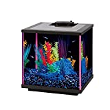 Aqueon NeoGlow LED Aquarium Kit Pink, 5.5 gallon/17''L x 9''W x 11''H