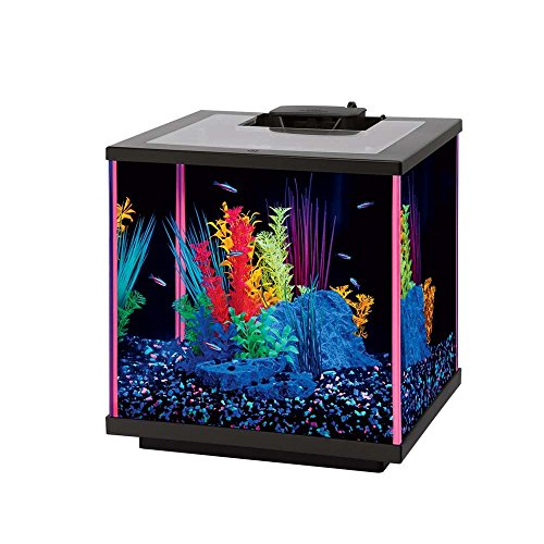 Aqueon Neoglow Aquarium Kit – Rectangle