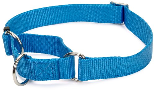 No Slip Limited Closure Collar, Blue Lagoon, 17 to 24-Inch, My Pet Supplies